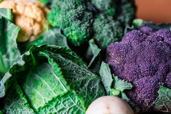 宗像福津産の新鮮野菜
